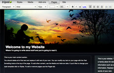 Tripod Site Builder screen shot